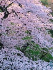 池田昌子 公式ブログ/そして、目黒☆ 画像1