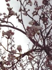 池田昌子 公式ブログ/もうすぐ♪ 画像1