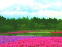 池田昌子 公式ブログ/久しぶりに会うと・・・。 画像2
