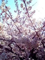 池田昌子 公式ブログ/春に思うこと。 画像1