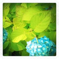 中村アン 公式ブログ/おはよ 画像1