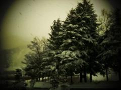 中村アン 公式ブログ/雪山 画像1