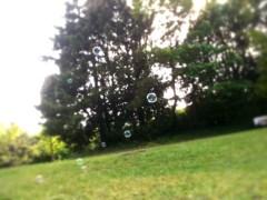 中村アン 公式ブログ/自然を 画像1