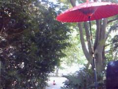 中村アン 公式ブログ/井の頭公園 画像1