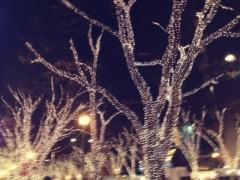 中村アン 公式ブログ/もうすぐクリスマス 画像1