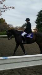 鎌田久仁宏 公式ブログ/GI馬に会ってきた。 画像1