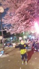 新宿カウボーイ 公式ブログ/お花見 画像1