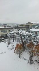 新宿カウボーイ 公式ブログ/冬景色 画像1