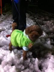 桂米多朗 公式ブログ/大雪 画像2