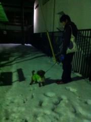 桂米多朗 公式ブログ/大雪 画像1