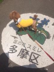 桂米多朗 公式ブログ/将(まさ)君と南武線と多摩川 画像3