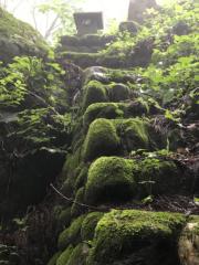 矢野武 公式ブログ/『 濃霧トレッキング 』 画像1