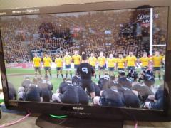 ������ ��֥?/�� AUS vs NZL��� �� ����2