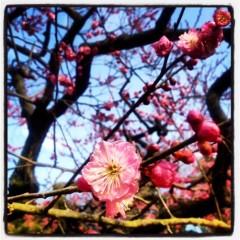 KEN'ICHI -LOKA- 公式ブログ/岡山。 画像2