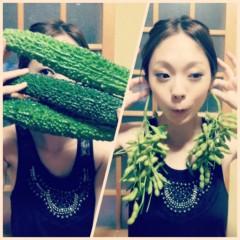 佐久田瑠美 公式ブログ/なつやさい 画像2