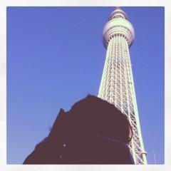 佐久田瑠美 公式ブログ/明日は 画像3