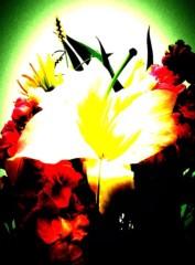 佐久田瑠美 公式ブログ/大切な日 画像1