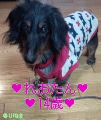 佐久田瑠美 公式ブログ/節分birthday 画像2