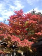 井伊恭子 公式ブログ/ブログはじめます! 画像1