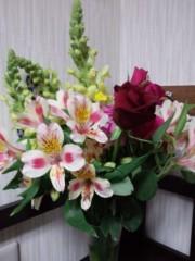 井伊恭子 公式ブログ/春 画像1