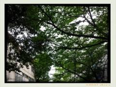 コウダリョウイチ 公式ブログ/自然。 画像1