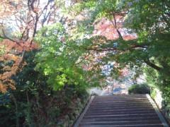 コウダリョウイチ 公式ブログ/冬風シグナル。 画像3