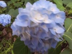 コウダリョウイチ 公式ブログ/7/4放送♪お便り募集♪ 画像1