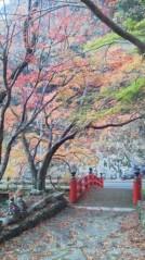 コウダリョウイチ 公式ブログ/ぶち山口県。 画像3