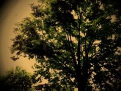 コウダリョウイチ 公式ブログ/カメラ 画像1