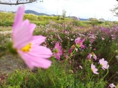 コウダリョウイチ 公式ブログ/野に咲く花のように。 画像2