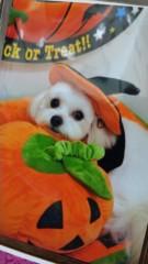 コウダリョウイチ 公式ブログ/あ!!ありがとうございましたm(__)m 画像3