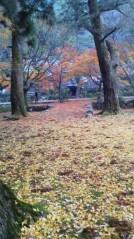 コウダリョウイチ 公式ブログ/ぶち山口県。 画像1