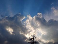 コウダリョウイチ 公式ブログ/あおい空 画像1