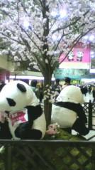 有馬あかり 公式ブログ/パンダ 画像2
