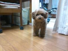 伊藤恵輔 公式ブログ/健康的な一日を。 画像1
