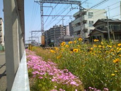 伊藤恵輔 公式ブログ/すごしやすい時期。 画像1
