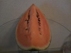 伊藤恵輔 公式ブログ/スイカが家にやってきた。 画像1