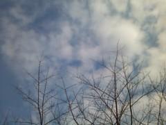 伊藤恵輔 公式ブログ/暖かいのも今日まで。 画像1