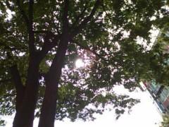 伊藤恵輔 公式ブログ/深緑の季節と言った所かな。 画像1