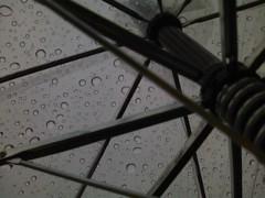 伊藤恵輔 公式ブログ/週の始まりは雨。 画像1