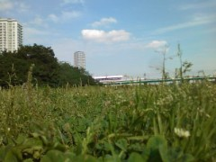 伊藤恵輔 公式ブログ/とある河のほとりで。其の2 画像1