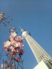 伊藤恵輔 公式ブログ/場所を変更してみました。‖ヽ(^^ゞ。。。。 画像1