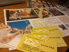 伊藤恵輔 公式ブログ/『猫』の写真展。 画像1