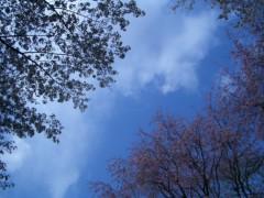 伊藤恵輔 公式ブログ/そんじゃお休みねぇ。ミ 画像3