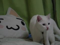 伊藤恵輔 公式ブログ/元気になるか解んないけど� 画像3
