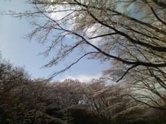 伊藤恵輔 公式ブログ/ホントに暖かくなったもんだねぇ。 画像1