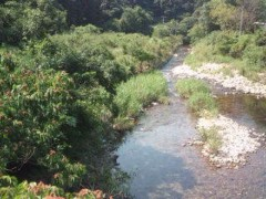 松川修也 公式ブログ/タイキガーデン予定地 画像1