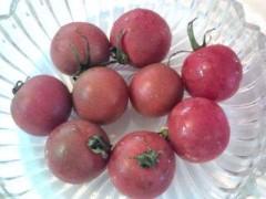 松川修也 公式ブログ/黒トマト 画像1