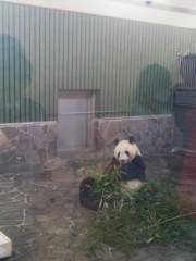 越田みゆ 公式ブログ/動物園。 画像1