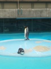 越田みゆ 公式ブログ/動物園。 画像2